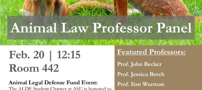 Animal Law Professor Panel, Thursday Feb. 20 at Lunch
